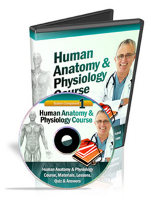 Product picture Human Anatomy & Physiology Course (Module 1)