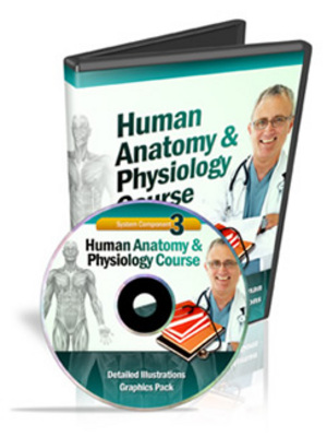Product picture Human Anatomy & Physiology Course (Module 3)